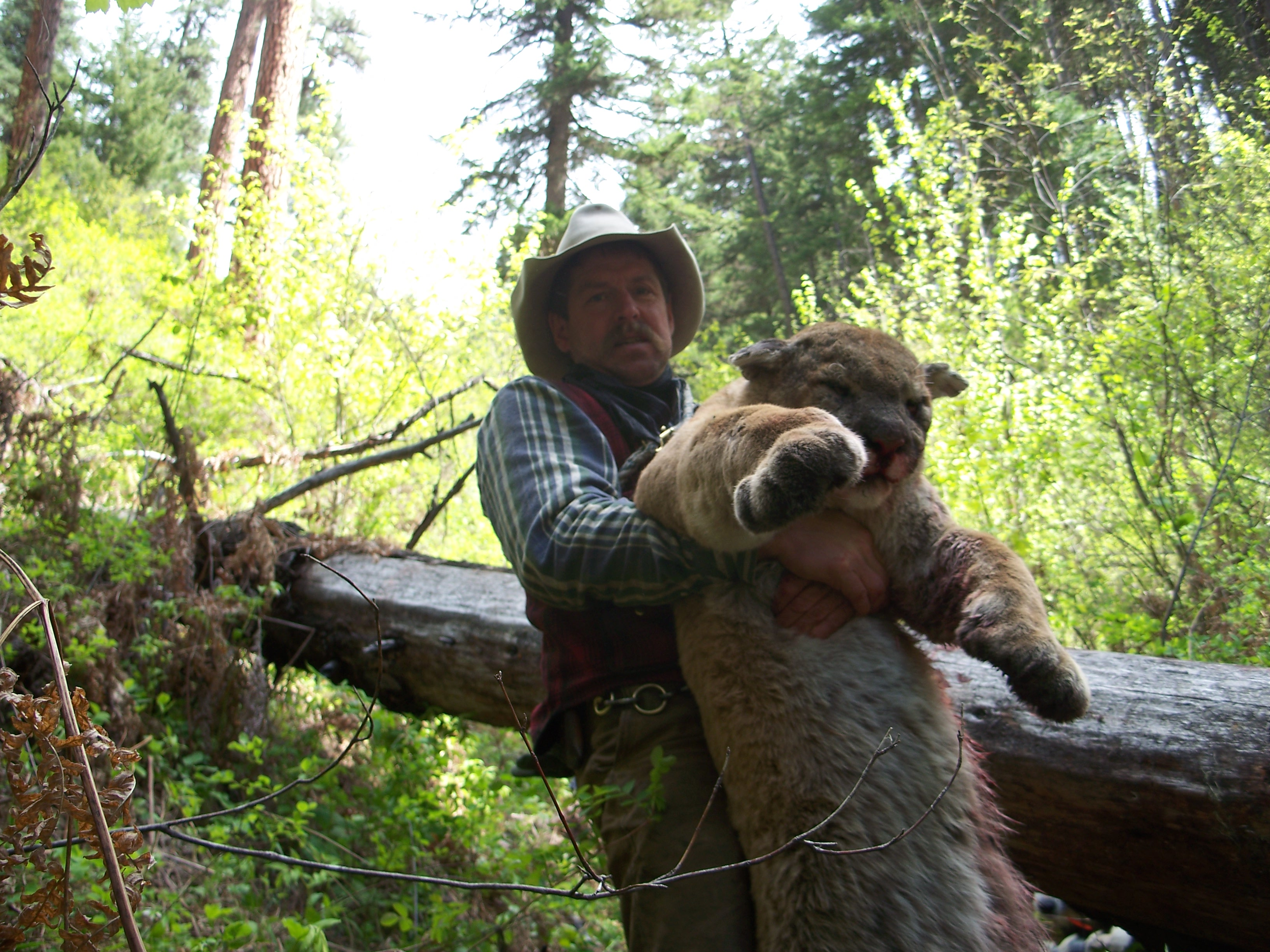 Lion Hunting – Richie Outfitters