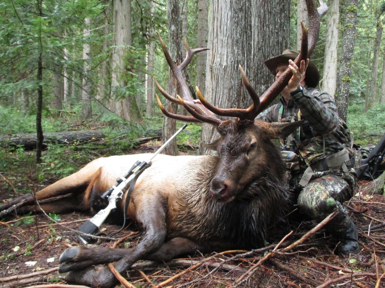 Elk-slide-hunter