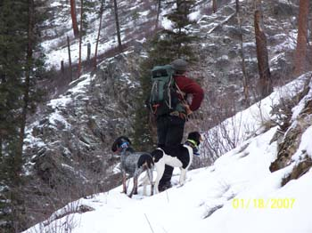 fall-winter-hiking_hounds