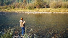 flyfishing-fly-fishing